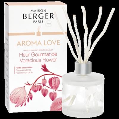 Maison berger - diffuseur aroma - Love